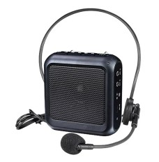 Player Portable Amplifier